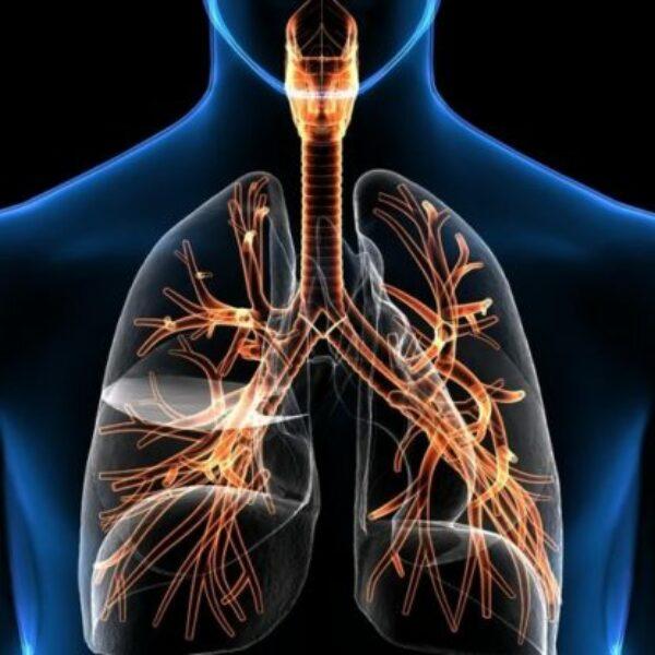 El poder de la respiración