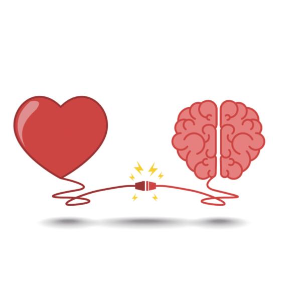 Comunicación cerebro-corazón