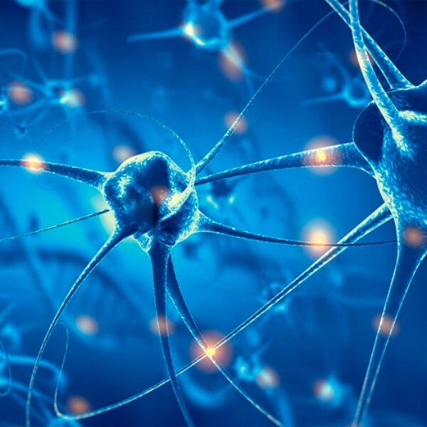 No hacer nada regenera tu cerebro